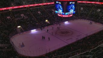 Lights Out at the Shark Tank: Darkness Delays Sharks Game