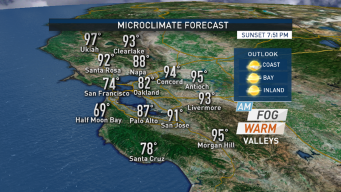 Forecast: Warming Trend, Valleys in the 90s