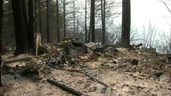 320-Acre Bear Fire Now 35 Percent Contained