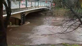Rain, Runoff Ramp Up Flood Threats Along Bay Area Rivers