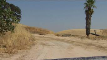 Woman's Body Found on Dirt Road in East Bay: Sheriff's Office