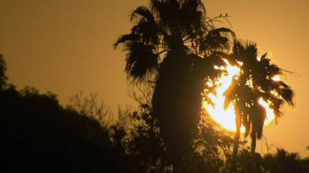 Sweltering Temperatures Blanket Most of Bay Area