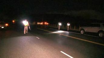 Pedestrian Struck, Killed in Sonoma County: CHP
