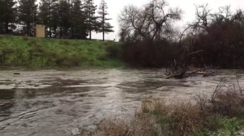 Evacuation Lifted for Residents Near Guadalupe River in SJ
