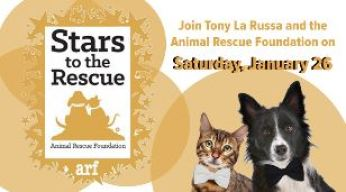 ARF's Stars to the Rescue Returns with Celebrity-Filled Musical Gala