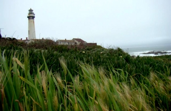 Happy 147th, Pigeon Point Lighthouse