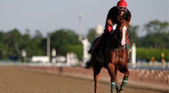 California Chrome Chases History at Belmont