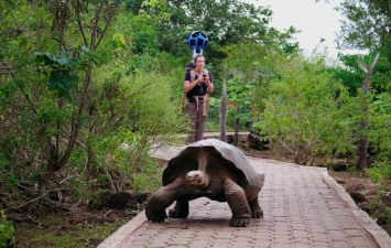 Google Takes You to the Galapagos Islands