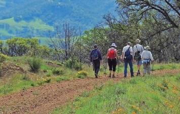 Go 'Round the Mountain' at Mount Diablo