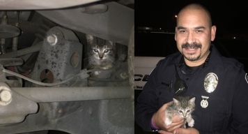 Fontana Police Officers Save Kitten From 'Certain Death'