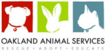 Dog Days of September Adoption Event