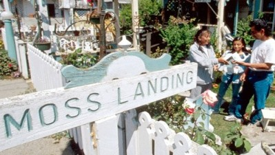 Moss Landing Antique Street Fair
