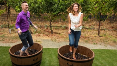 Grape Stomp Time at Grgich Hills