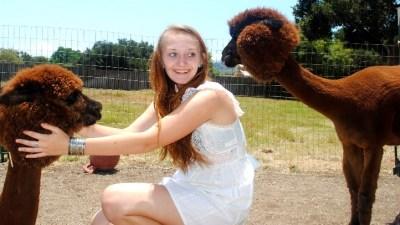 Alpaca Magic