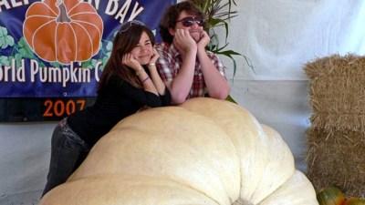 Half Moon Bay's Giant Pumpkins