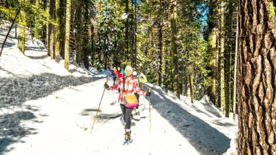 Crunch, Crunch: Yosemite Snowshoe Adventure