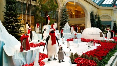 Penguins on the Strip