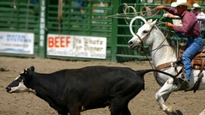 93rd Annual Livermore Rodeo