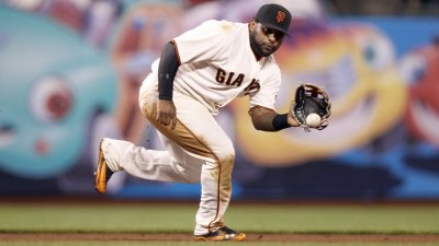 Surgery for Panda, Hopeful of Four-Week Return