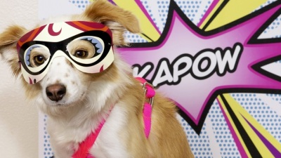 Comic Canines: PAWmicon