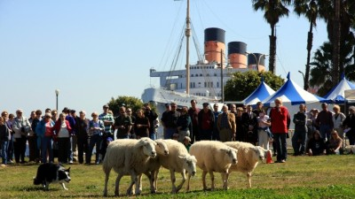 Scotland Celebrated, Queen Mary-Style