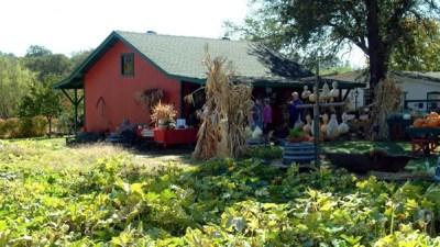 The Sierra Oro Farm Trail