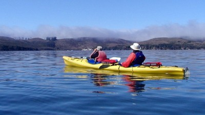Tomales Bay Kayak Adventure