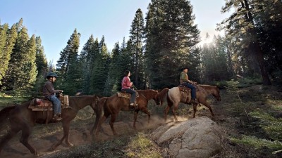 Sequoia Horseback Riding