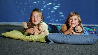 Spring Sleepover at the Aquarium