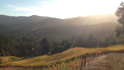 Rare Tastings: Santa Cruz Wine Passport