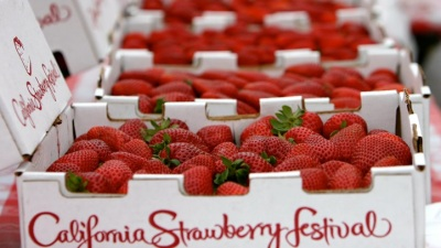 Berry Bevy: California Strawberry Festival