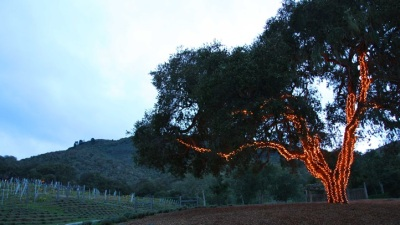 The Festive Season at Carmel Valley Ranch