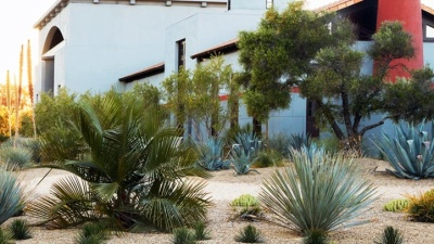 Tasting Room + Tour: What's New at Clos Pegase