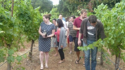 Area Wineries Mark Down to Earth Month