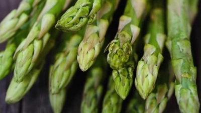 Hollandaise or Plain: Asparagus Extravaganza