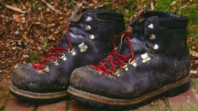 Joshua Tree: Centennial Hiking Challenge