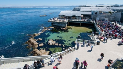 Marking World Oceans Day in Monterey