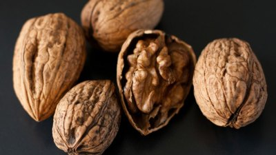 Walnutty Wonders: California Nut Festival