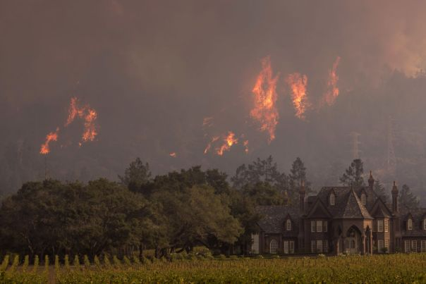 CA Wildfires Expected to Cause Record Insurance Loss: Report
