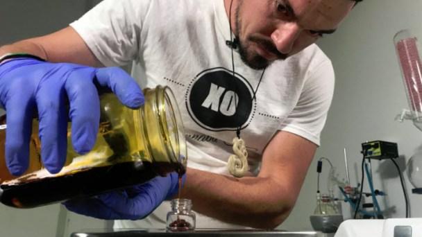 Industry Insiders Warn of Fraud at Marijuana Testing Labs