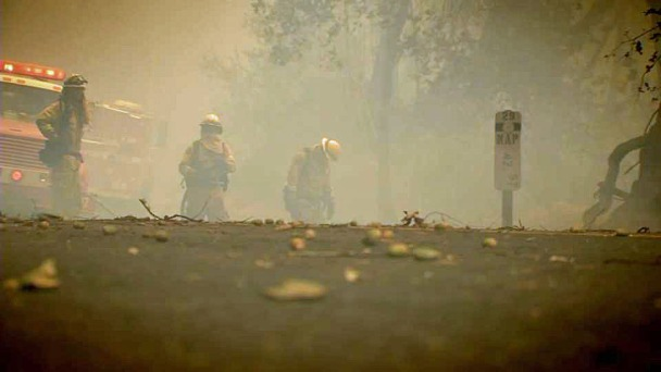 Firefighters' Mental Health Needs More Attention: Survey