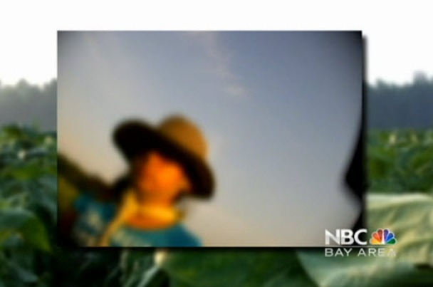 Children in the Fields: North Carolina Tobacco Farms