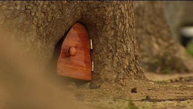 The Mysterious Tiny Door in a Tree