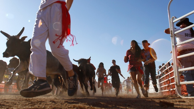California's Running of the Bulls Sparks Controversy