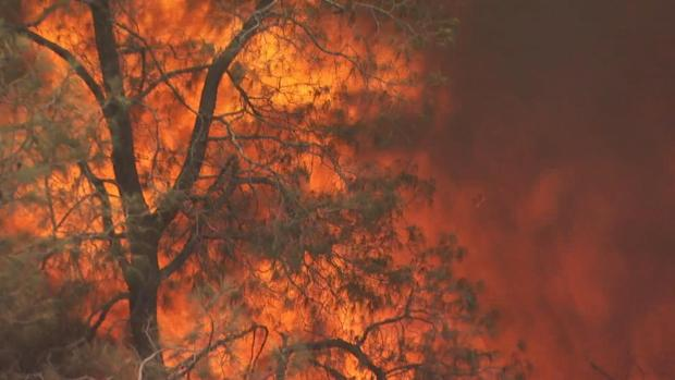 [BAY] Bay Area Firefighters Among Thousands Battling Detwiler Fire