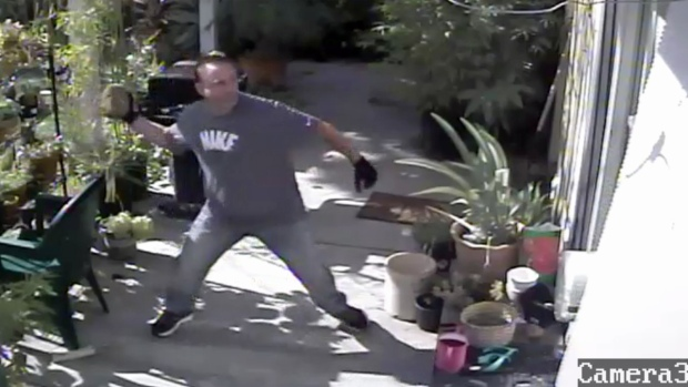 Surveillance Video Captures Suspected Thief Breaking Into San Jose Home