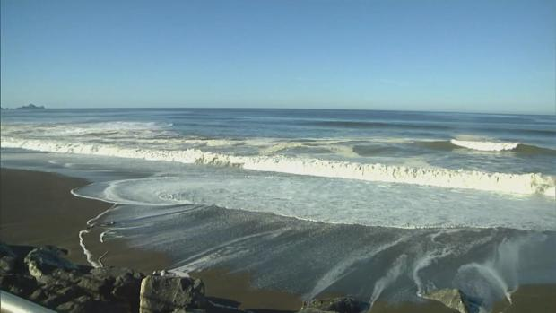 Surf's Up! Dangerous Waves Along Pacific Coast