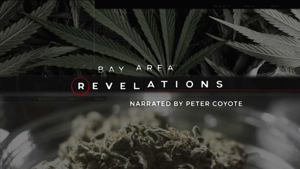 Bay Area Revelations: Cannabis Rush Full Episode