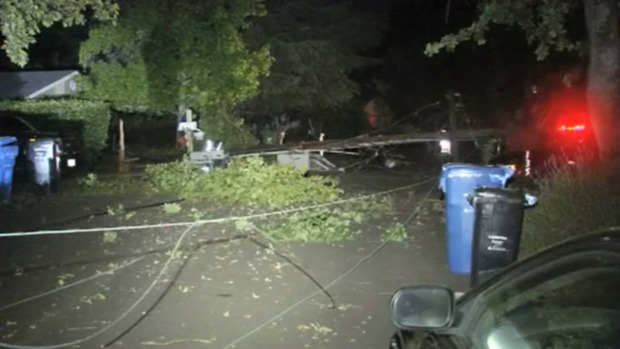 [BAY ML 6A VO ONLY] RAW: Rain-Weary Tree Falls, Knocking Out Electricity to Hundreds in Danville