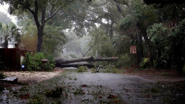 Million Without Power in North, South Carolina